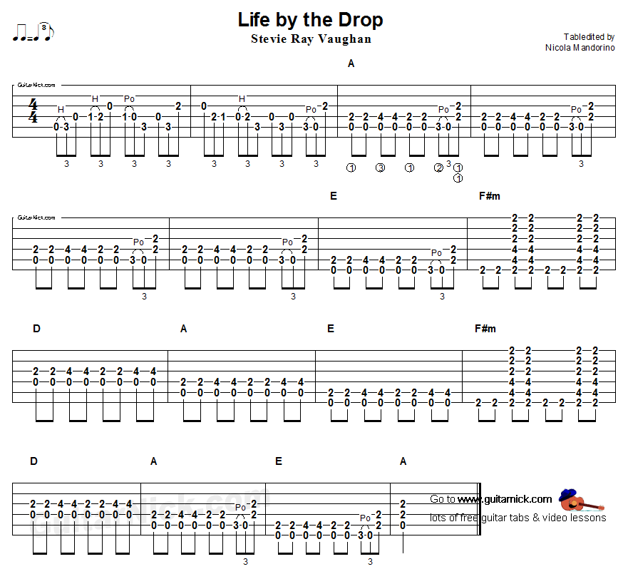 Life by the Drop, Steve Ray Vaughan - acoustic guitar blues solo 14