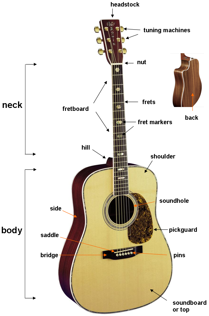 the parts of the guitar. Black Bedroom Furniture Sets. Home Design Ideas